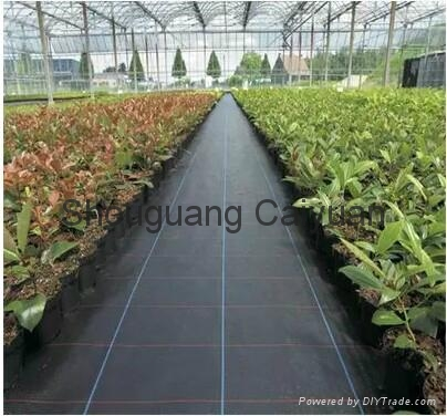 Garden pp woven ground cover /WEED BARRIER/NEEDLE PUNCHE 1