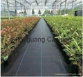Garden pp woven ground cover /WEED