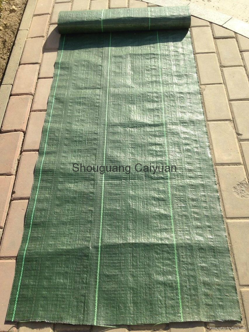 Garden pp woven ground cover /WEED BARRIER/NEEDLE PUNCHE 4