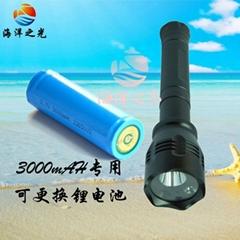 便攜式強光攝像電筒