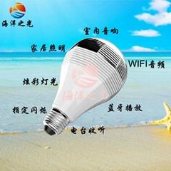 WIFI電台音樂燈