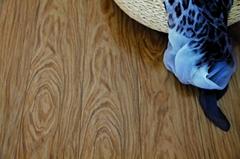 Bathroom Waterproof Wood Material Flooring