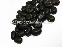 Mucuna Pruriens Seeds & Extract