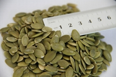 2014 New crop shine skin pumpkin seed kernel gradeAA