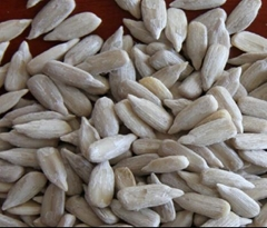 sunflower seed kernel confectionary grade