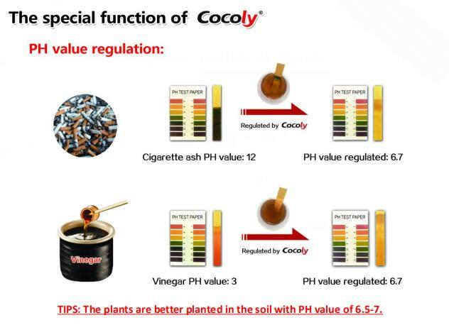 Cocoly complete nutritional water soluble fertilizer in granular shape 2