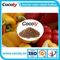 Agriculture fertilizer cocoly water soluble NPK 1