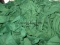 Green Colour Hosiery Clips