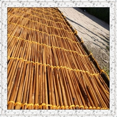 Carbonized reed screen