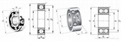 SKF 6205 NR bearing