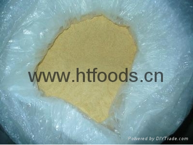 dehydrated onion powder 3