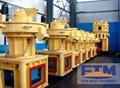 Complete Ring Die Pellet Machine For Wood 3