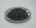 XinYang MaoJian Tea 4