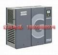 阿特拉斯管路過濾器濾芯2901054100 1