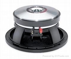 New 10'' B&C woofer speaker