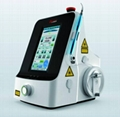 Veterinary Surgery and Therapy with Diode 980-Nm Diode Laser 1