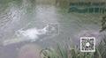 新景®系列潜水推流增氧机 4