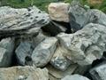 廣東英石假山石 5