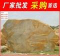 廣東龍川大型黃臘石