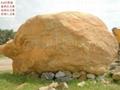 廣東龍川大型黃臘石 3