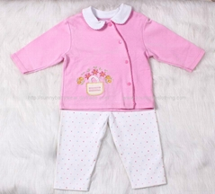Baby Girl Boutique Clothing Set With Embroidery 2pcs
