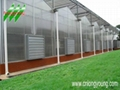 Polycarbonate Hothouse 2