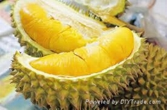 DURIAN WITH BEST PRICE AND SWEET TASTE
