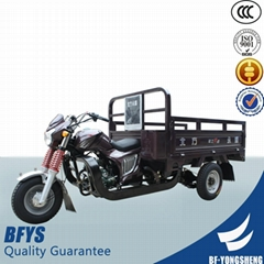 Large loading capacity three wheel motorcycle scooter with best price