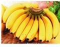 求购芒果菠萝香蕉 2