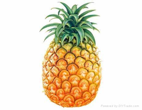求购芒果菠萝香蕉 3