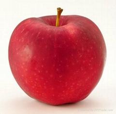 求购富士苹果
