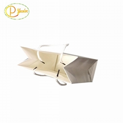 Custom shopping paper bag with logo printing