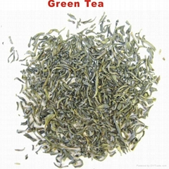 Fresh Collection Organic Green Tea, China Green Tea Price per kg