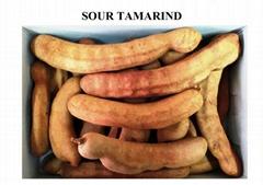 Sour Tamarind