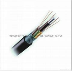 层绞式钢铠铠GYTs4芯室外架空光缆