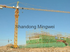 safely China Tower Crane Qtz50 (5008)
