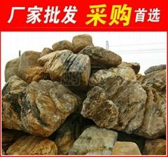 合肥千層石