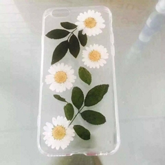 Wonderful flowers design clear cover iPhone6S protective case