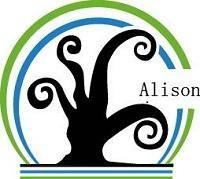 Guangdong Alison Hi-Tech Co.Ltd