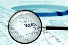 Auditing Support Services