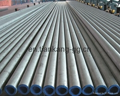 Duplex Stainless Steel Seamless Tube/Pipe