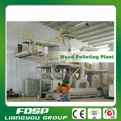 CE Certificated Biomass Complete Wood Pellet Machinery Line