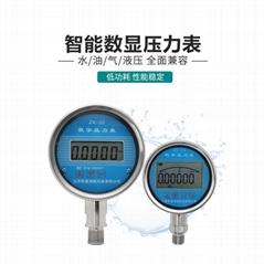 江蘇廠家供應智能數字壓力表高品