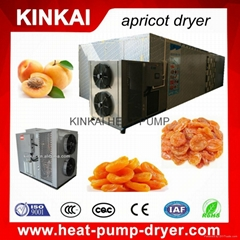 Digital controller fruit dryer machine