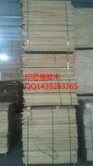 天津橡膠木
