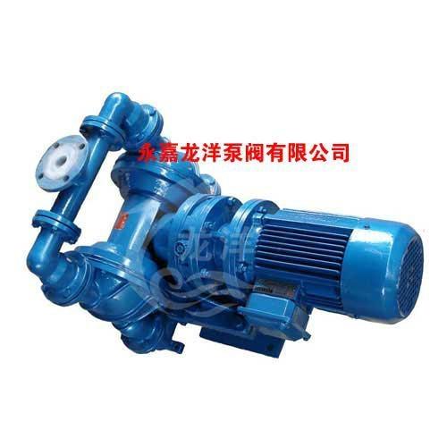 DBY不锈钢电动隔膜泵 1