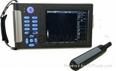Rectal ultrasound-Testing pregnancy for