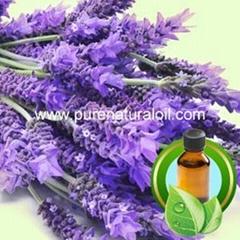 100% Pure Lavender Essential Oil