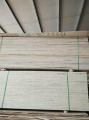 优质杨木包装箱板材