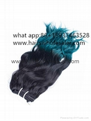 100%Human Hair Weft With Closure Ombre Color Wholesale Price